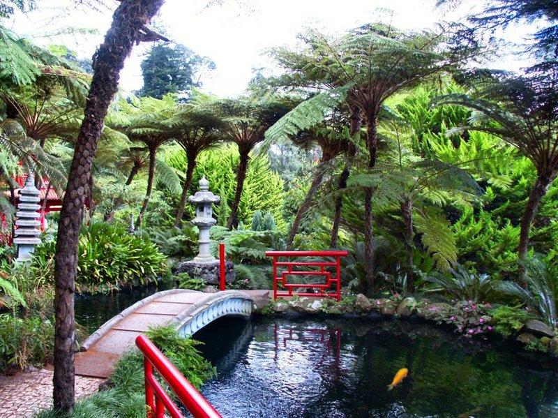 Japanse_tuin